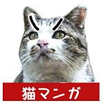 Banner_512_tashiro_3