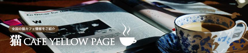 猫 CAFE YELLOW PAGE | 猫パンチTV powered by ココログ