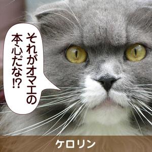 091203_touko