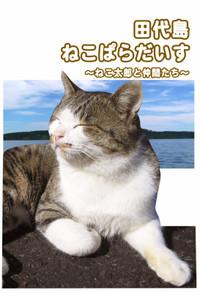 Tashirohyousi001