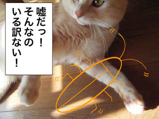 20080720_02