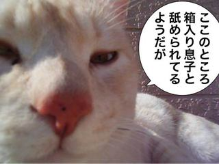20081002_01