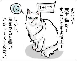 20090608_1