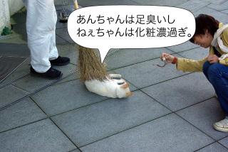 Fukidashi55