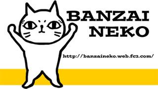 Banzaineko